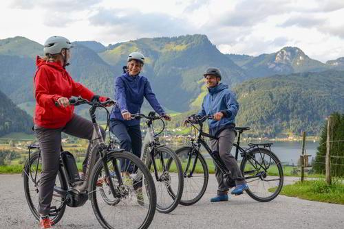 499181884cdad4 Pedelecs eBikes Testsieger E-Bikes für überall